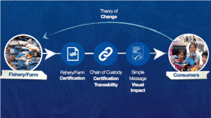 Kelvin-Ng-Theory-Of-Change