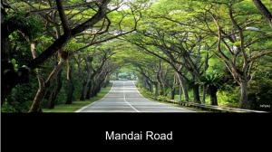 Lena-Chan-Mandai-Road
