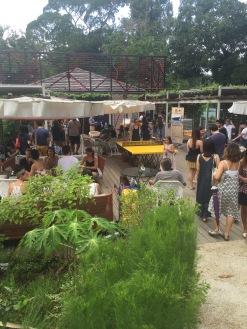 OFC-HerbsGarden-Market