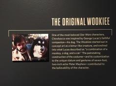 StarWars-DenverArtMuseum-Wookie