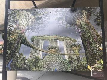 OnceUponATimeTomorrow-GardenByTheBay-MBS