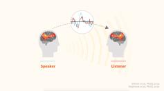 speaker-listener-brains-in-sync