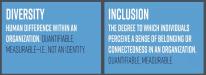11-Diversity-Inclusion